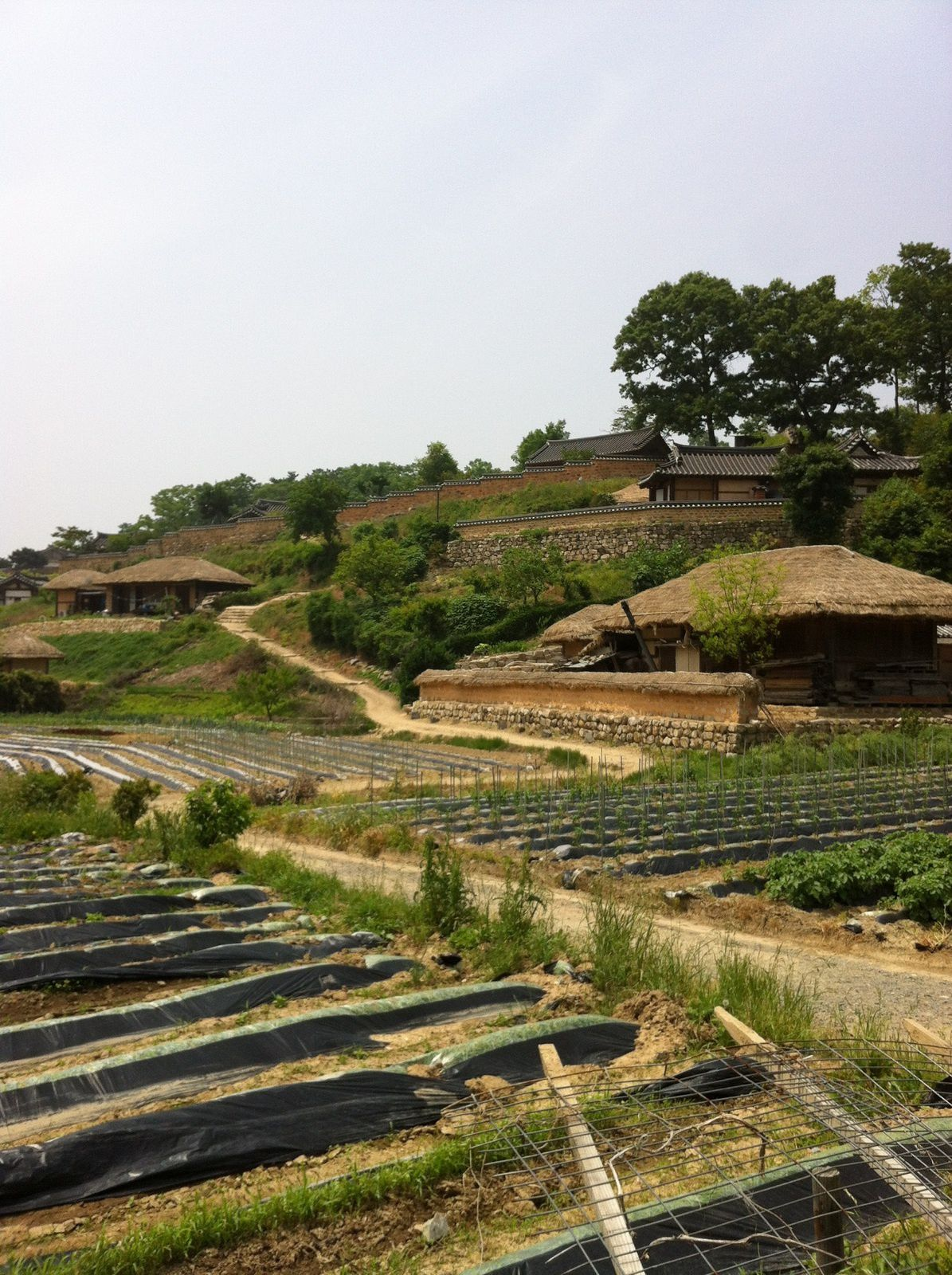 COREE : VILLAGE FOLKLORIQUE DE YANGDONG