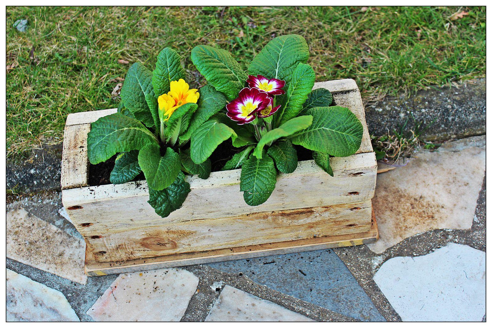 http://luniversdegarfield59.over-blog.com palette bois récup déco jardinière jardin fleurs pot