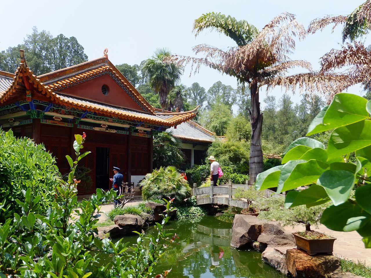 Que faire à Kunming, capitale du Yunnan ?
