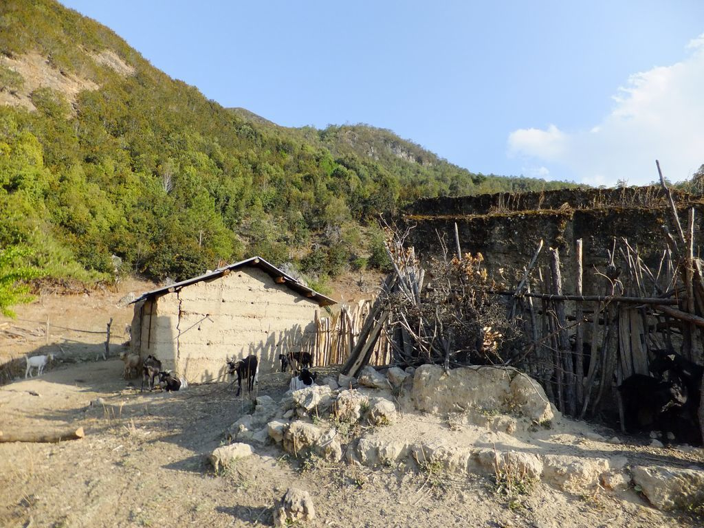 Zhang Yu He : une de nos rencontres les plus insolites au Yunnan !