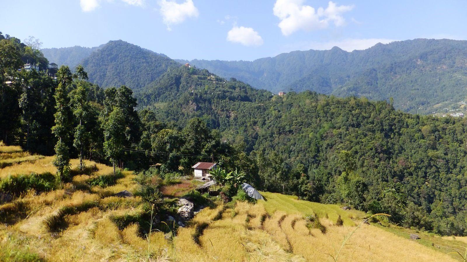 Bienvenue au Sikkim !