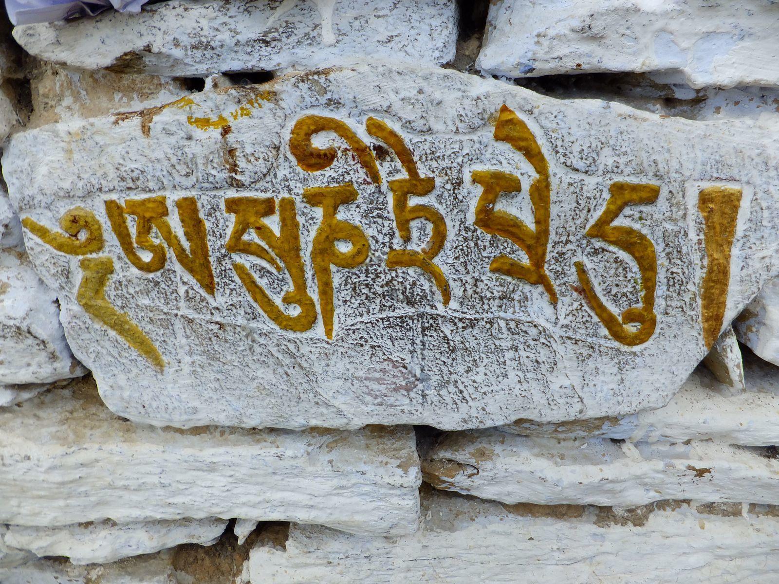 Une idée de visite près de Kaluk : le monastère de Rinchenpong !