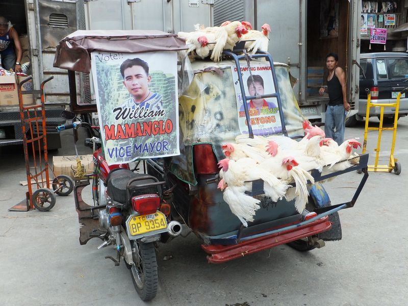 On the road... aux Philippines !