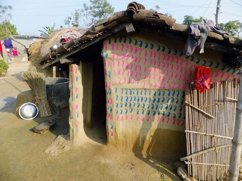 Les maisons traditionnelles de l'ethnie Tharu