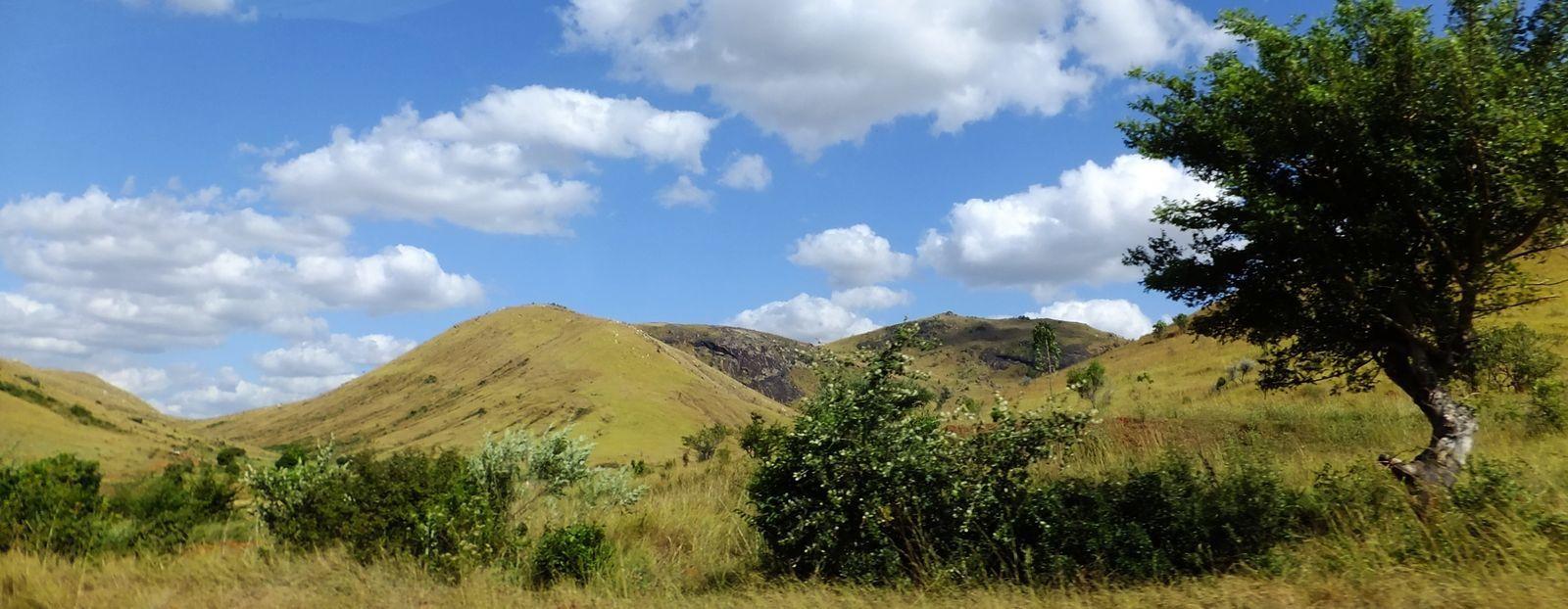 Parc de l'Isalo : nos 4 bonnes raisons de visiter le Colorado malgache !