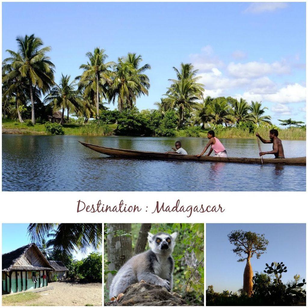 Un voyage à Madagascar, ça vous tente ?