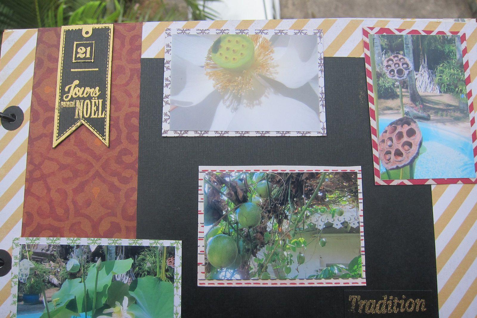 Fleurs et fruits dans le jardin de Dany