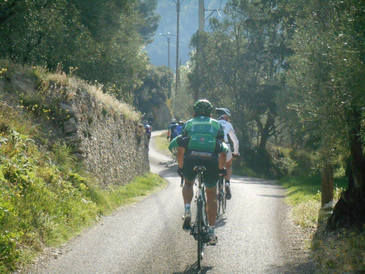 Magnifique petite route du col de la Croix Rouge entre les oliviers.