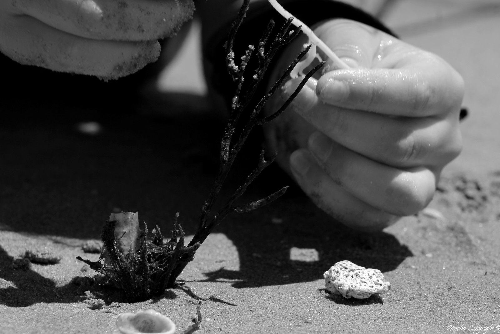 Les mains dans le sable...