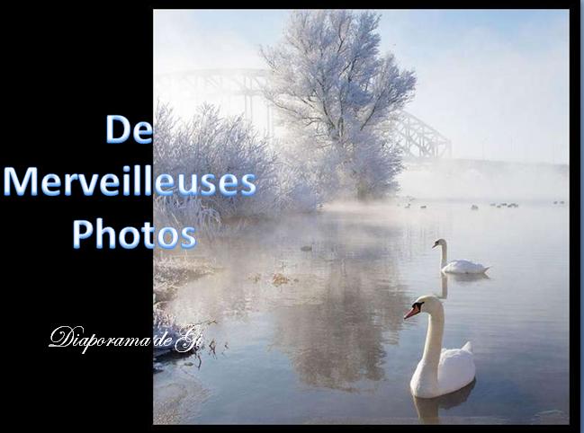 De merveilleuses photos