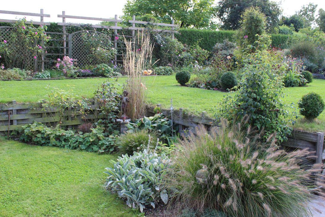 L 39 automne tout en douceur les asters le jardin de bene - Jardiniere automne hiver ...