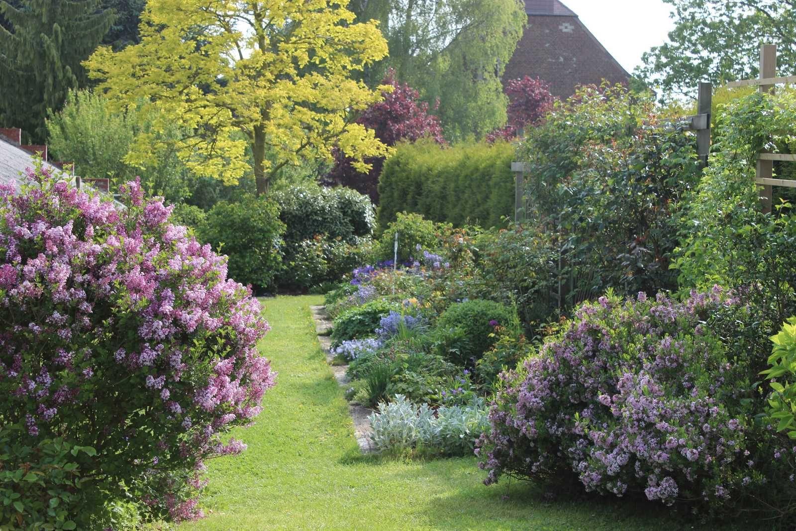 Le jardin à la mi-mai
