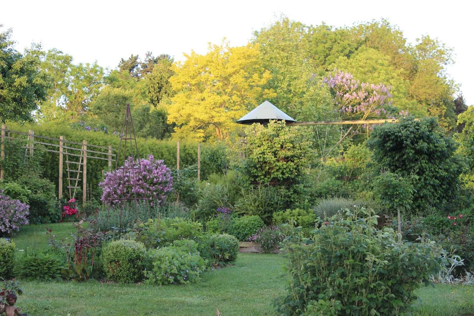 Dans le fond du jardin, il y a du vert et du mauve...