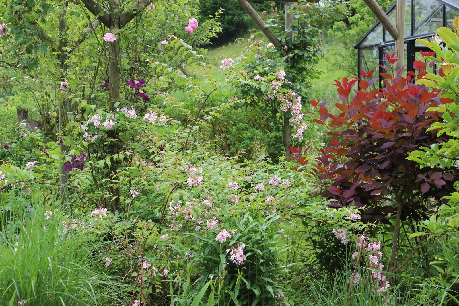 Le superbe jardin de Virginie