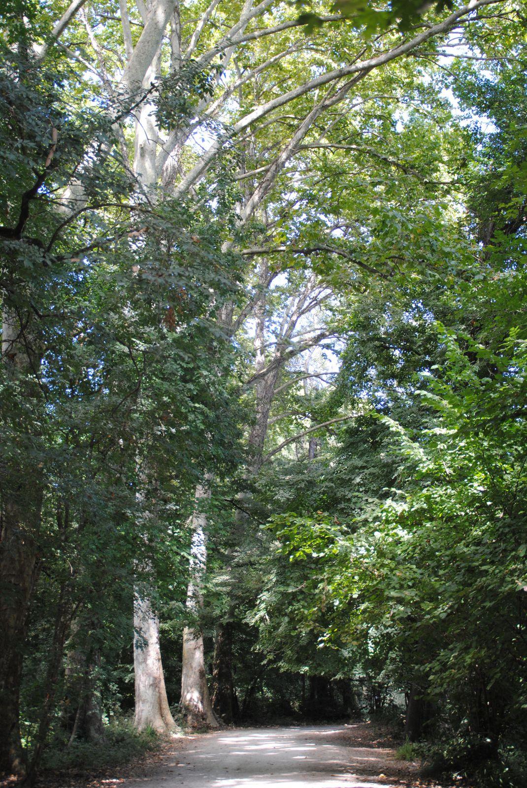 parc d 233 partemental de villeneuve loubet balades d ici et d ailleurs leblogdechristiane06