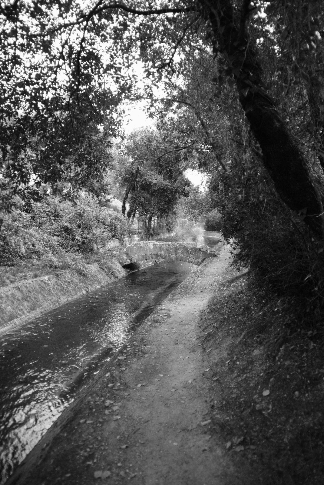 Le Tignet le canal de la Siagne Balades d'ici et d'ailleurs