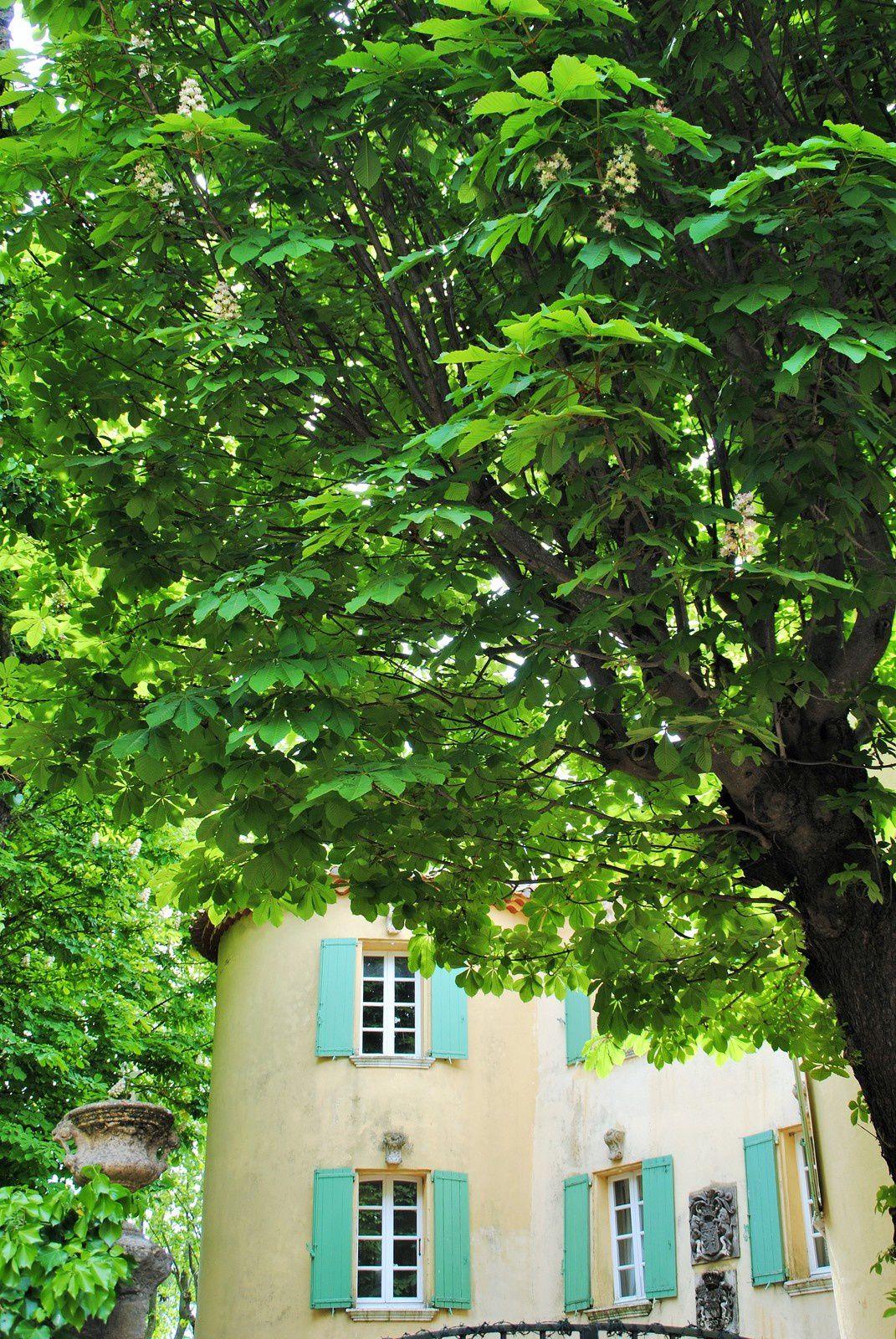 St Paul en forêt (Var) balades d'ici et d'ailleurs