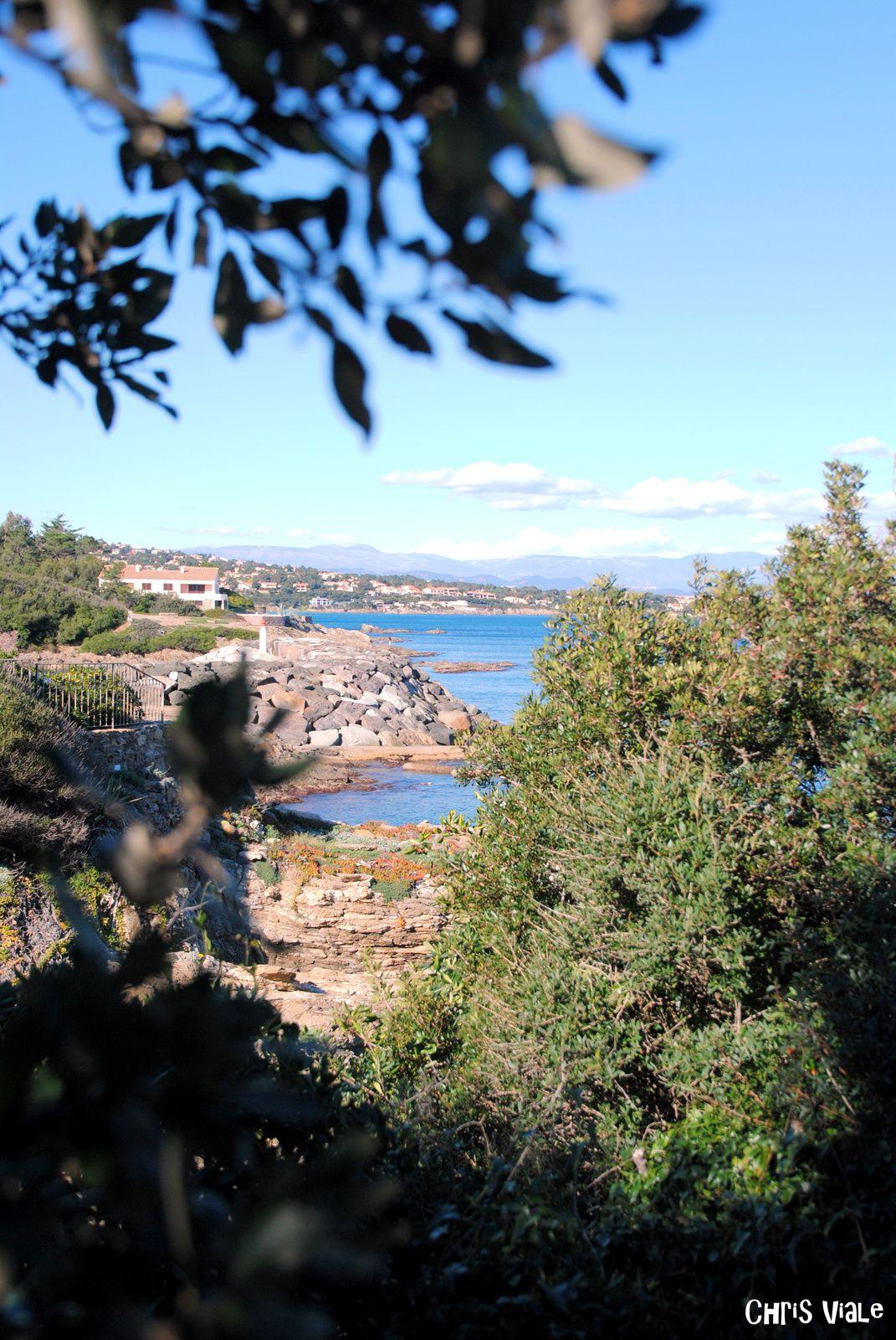 Vivier maritime Gallo-Romain des Issambres ( Balades d'ici et d'ailleurs )