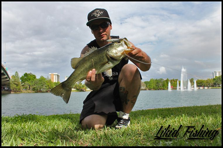 Bass fishing in orlando florida for Bass fishing orlando