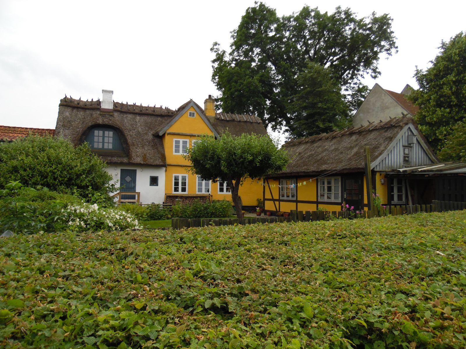 Musée des bateaux viking à Roskilde