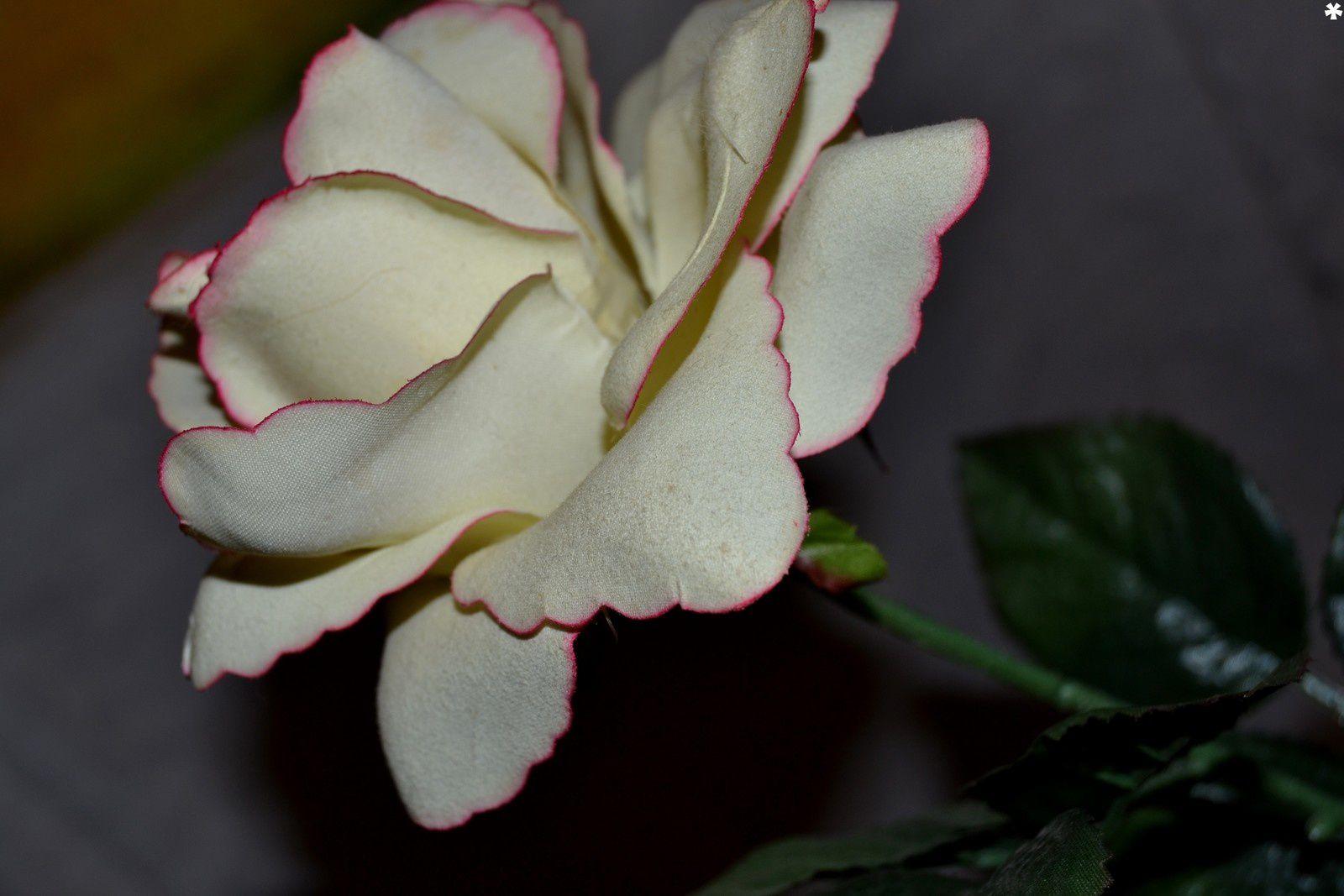 essai avec fleur en tissu.