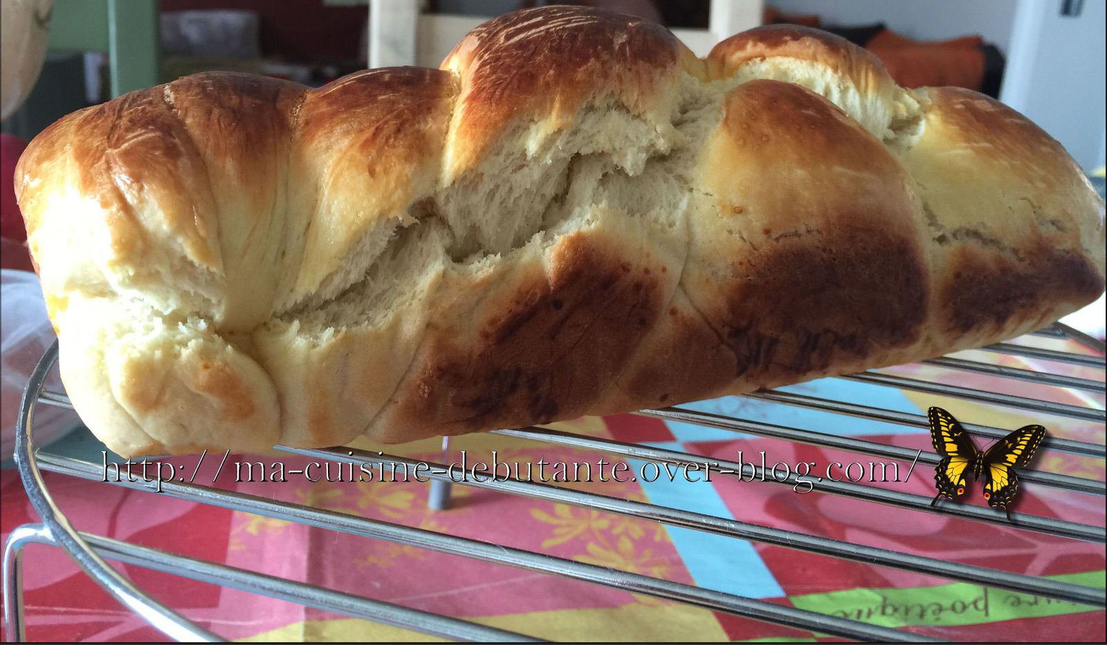 Pain au lait express au Companion