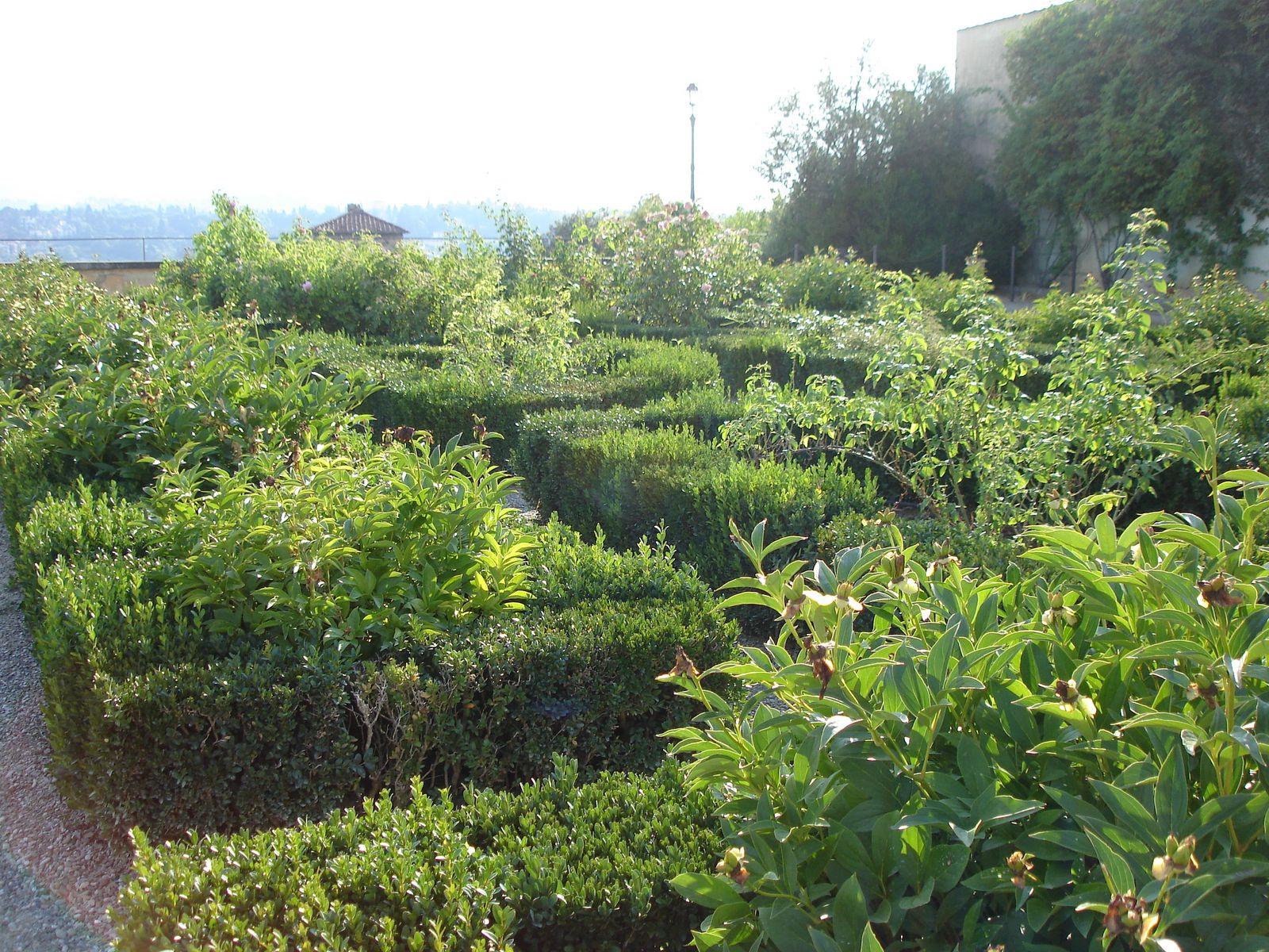Il tait une fois un jardin palazzo pitti florence for Jardin italien