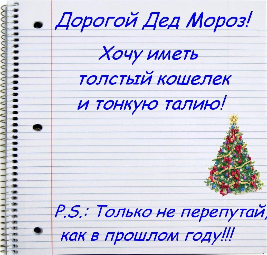 Cher Père Noël ! Je veux avoir un épais porte-monnaie et une fine taille. P.S. Mais ne t'emmêle pas les pinceaux, comme l'année denière !