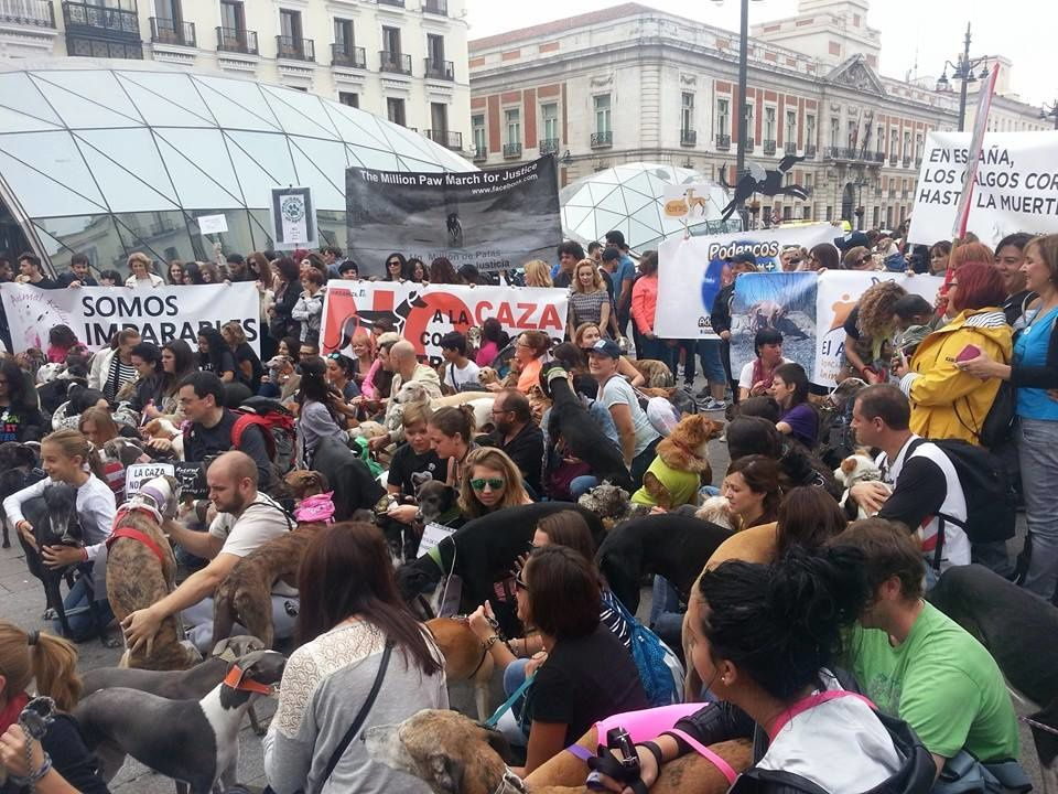 Le 4 octobre 2015 à Madrid