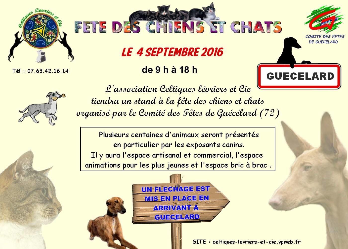 Dans la Sarthe, le 4 septembre ... la Fête des chiens et des chats ... affiche à diffuser, partager ... sans modération