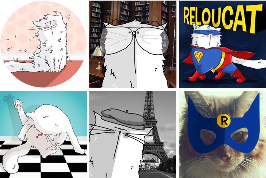 motifs de la collection Pattes de Velours and Co