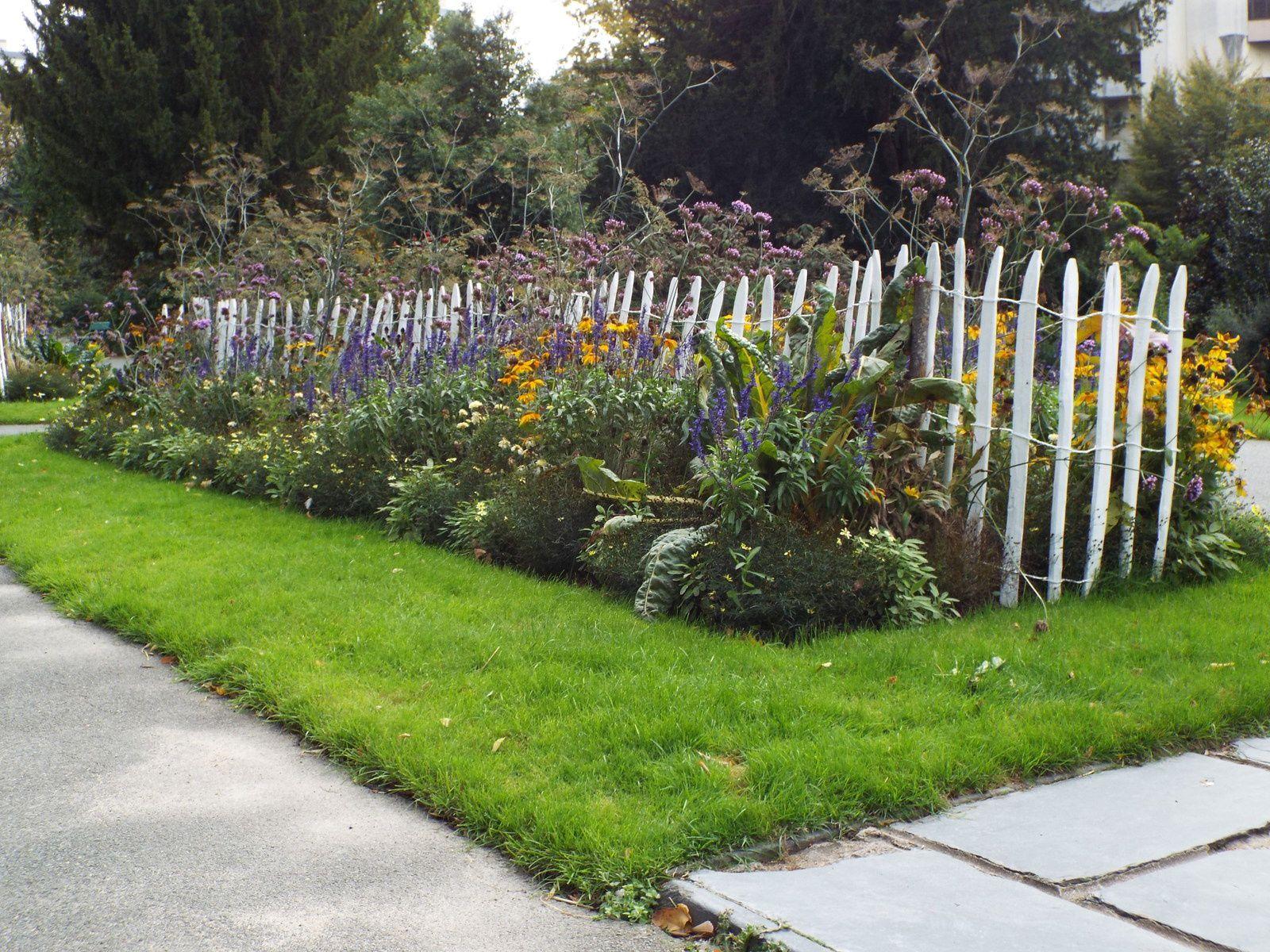 Le jardin des plantes d 39 angers en automne jardin de - Plantes fleuries d automne ...