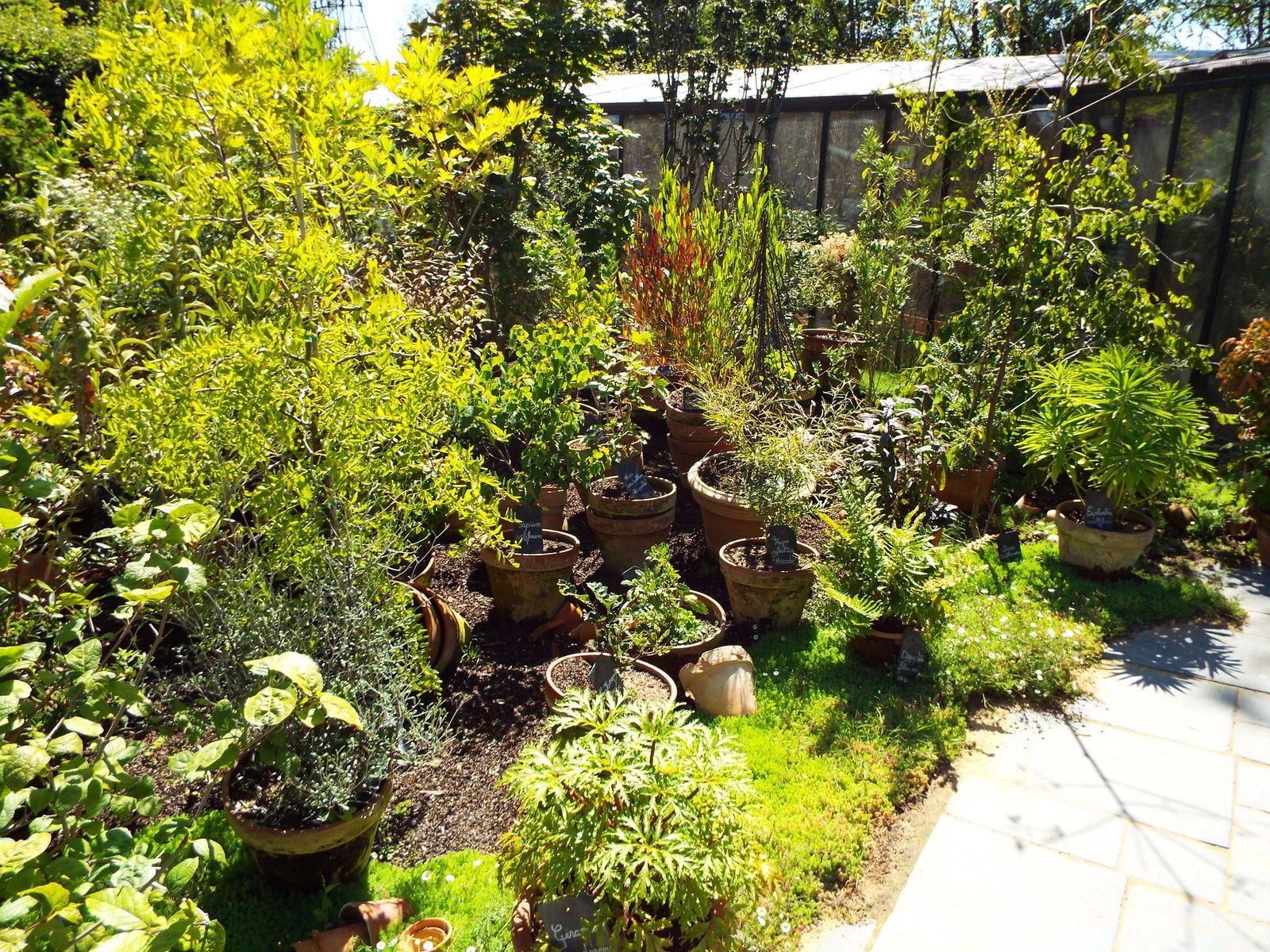 Festival des jardins chaumont sur loire 1 jardin de for Jardin de chaumont 2015 tarif