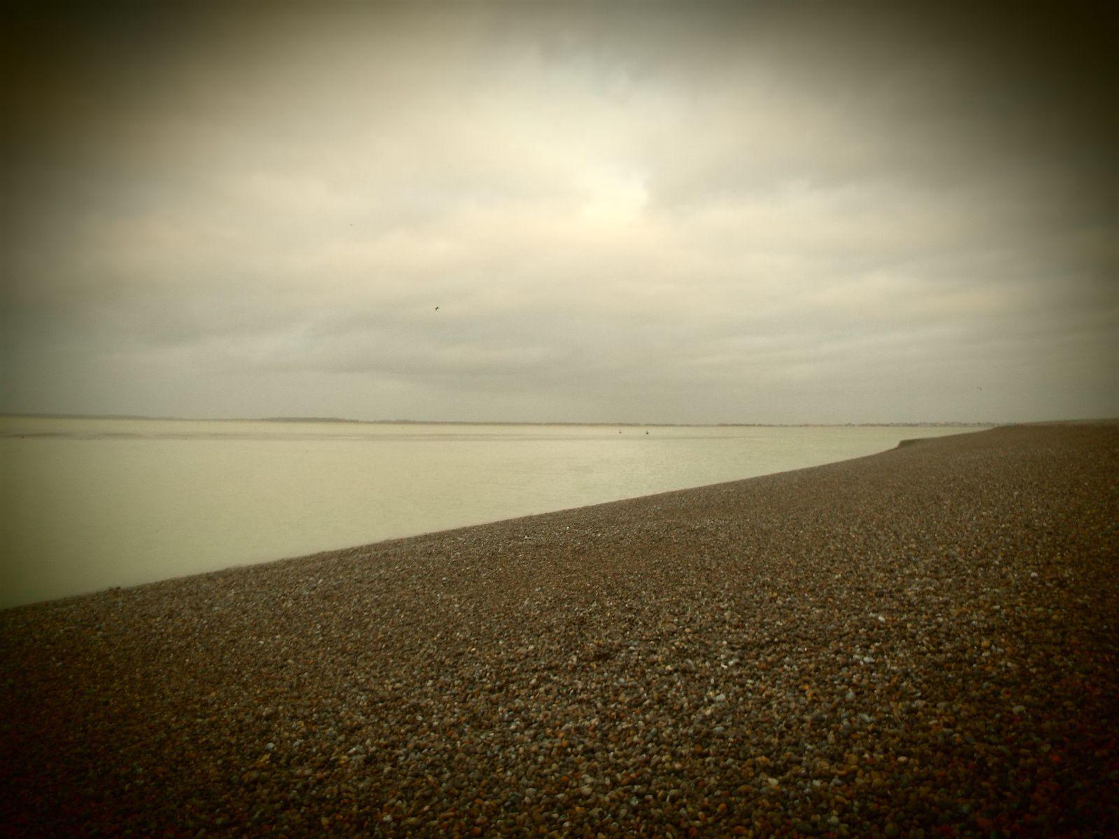 Promenade en baie de Somme.