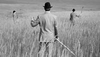 Kenneth Hayworth et l'immortalité - Sacrifiera-t-il sa vie pour la Science?
