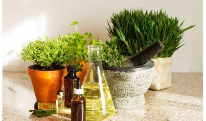 Petit rappel: Soigner les maux de l'hiver avec les plantes sans se ruiner | Les moutons enragés