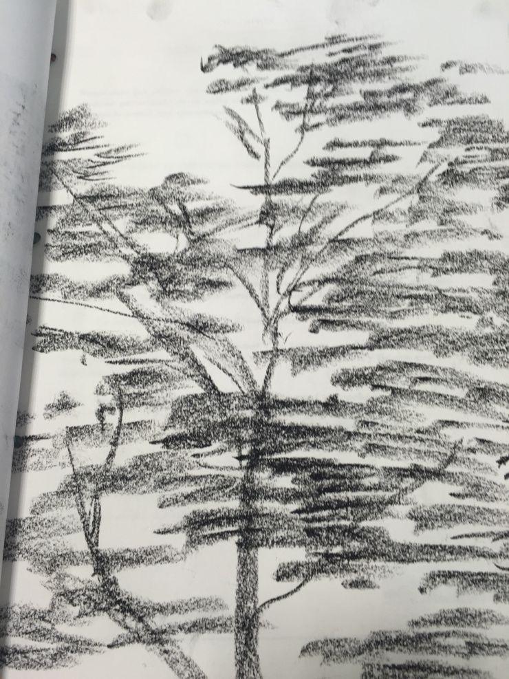 Visite chez Claude Monet