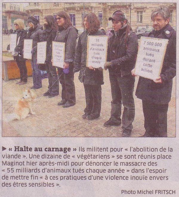 Journée Mondiale de l'Abolition de la viande - Nancy