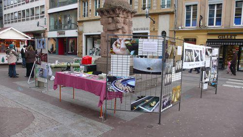 Stand foie gras - Metz