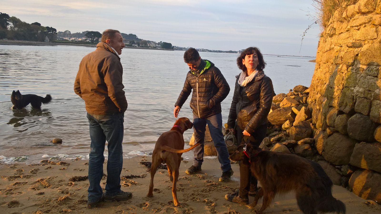 Formation clicker sous le soleil du Finistère Nord