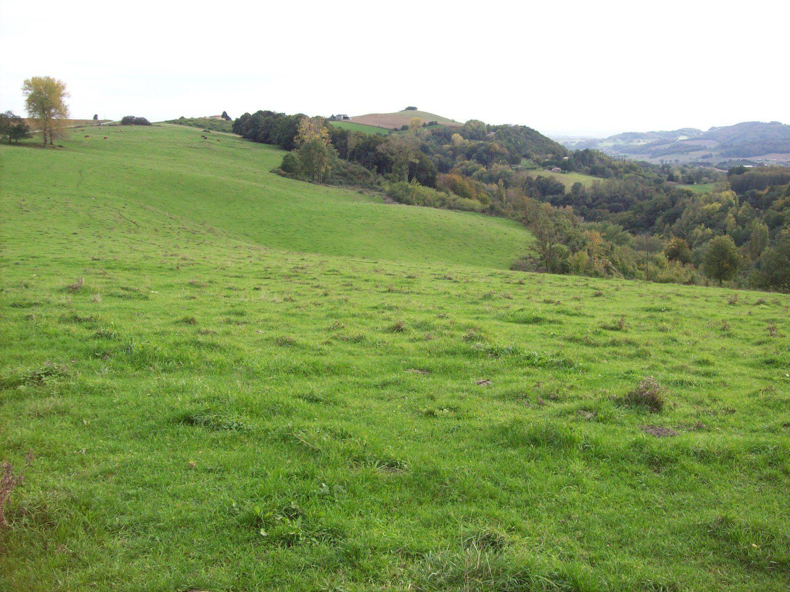 Marthe Robin et les collines