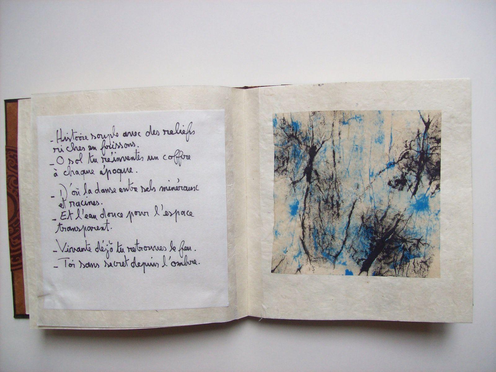 Livre unique (Régis Roux/ Constance Fulda, mars 2015.)