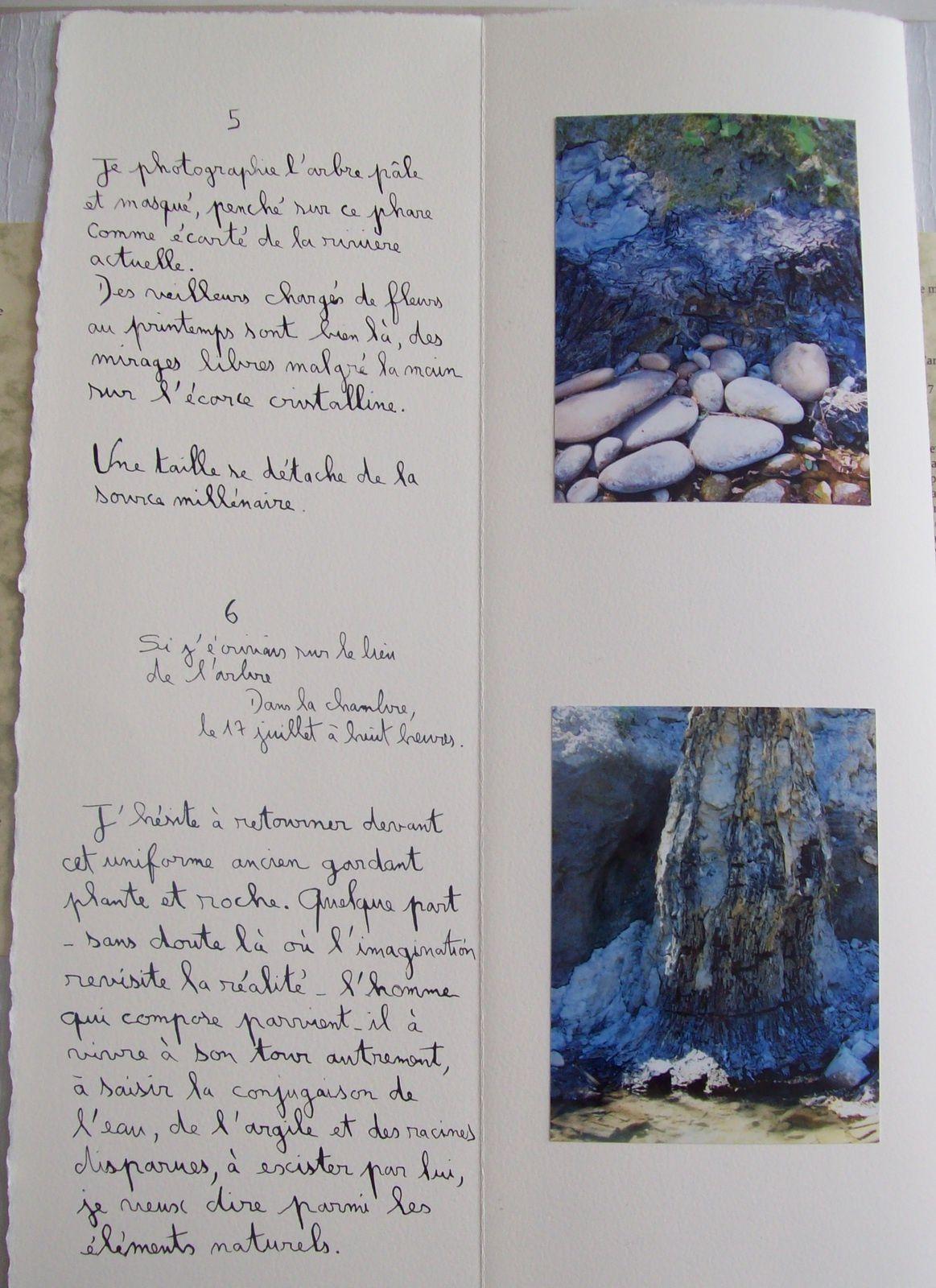 Livre d'artiste (poèmes et photos de Régis Roux; empreintes de Constance Fulda. été 2015)