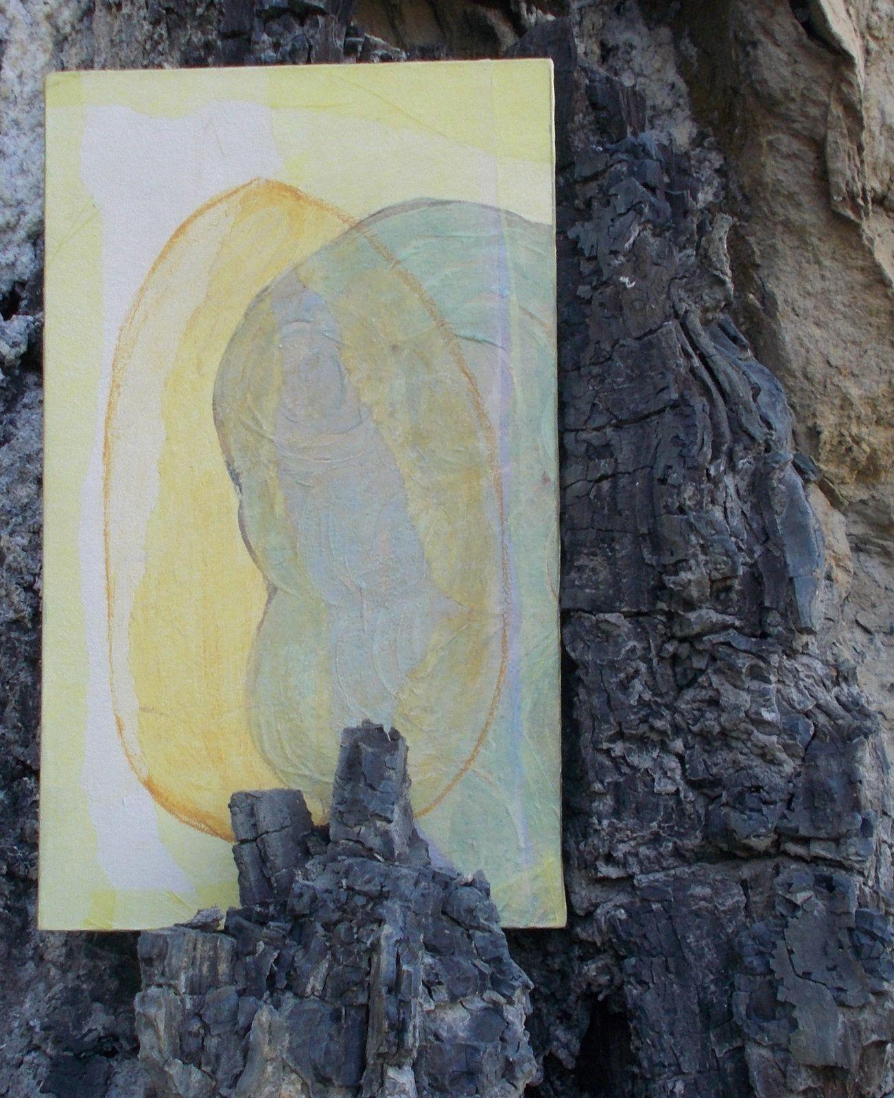 Couverture de Galets photographiée sur l'arbre fossile de la Galaure. Photos de Régis Roux. Avril 2017.