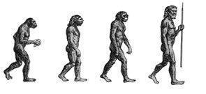 Séquence : La préhistoire