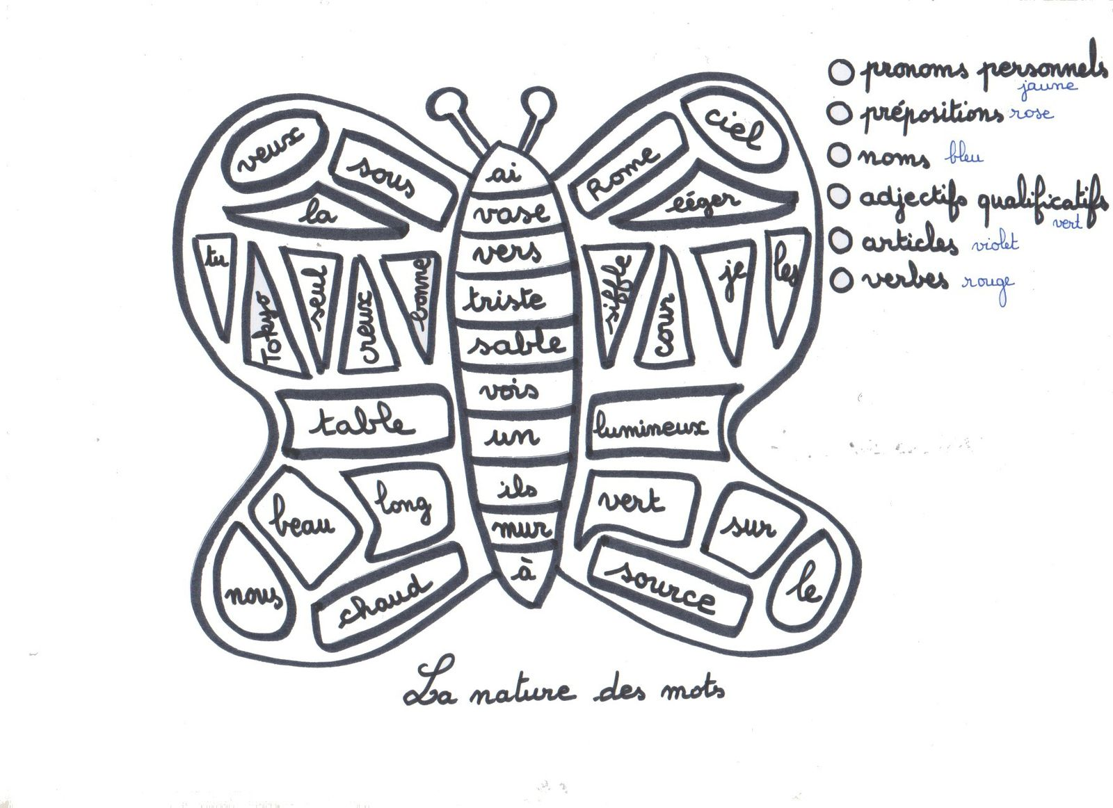 coloriage cod la nature des mots le papillon