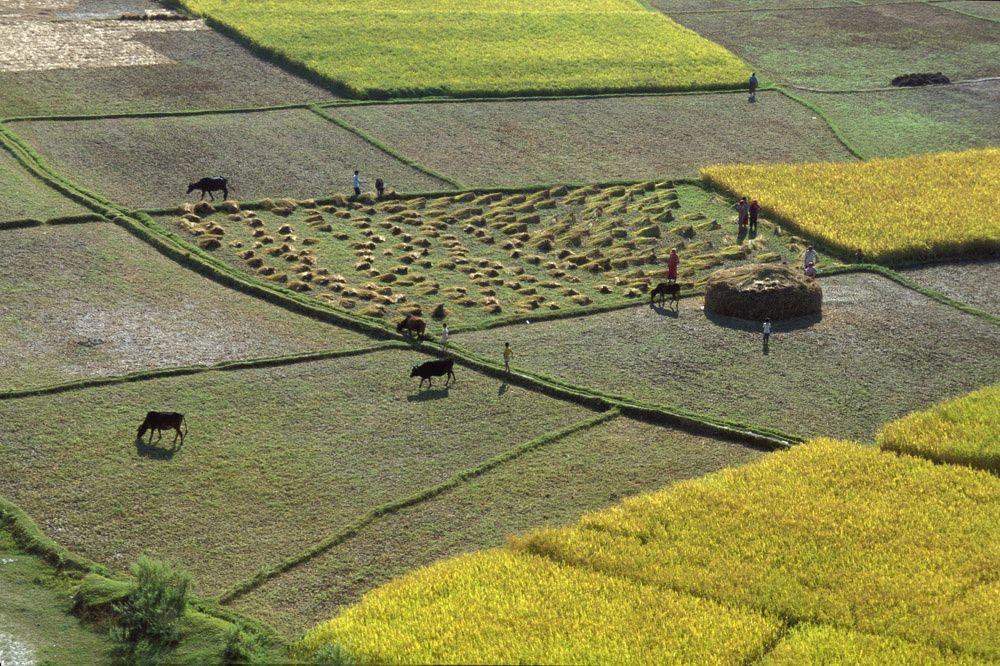 Géographie : Des photos de paysages à analyser