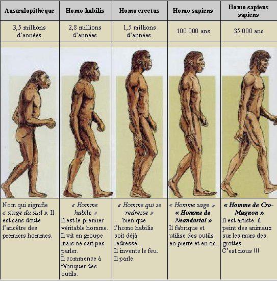 Séquence la préhistoire