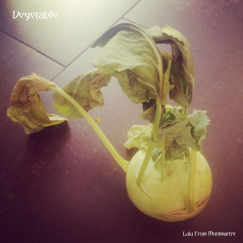 Photo A Day Challenge : février 2014