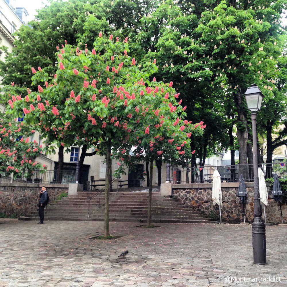 12. Montmartre au printemps, 75018